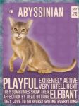 Abyssinian Cat Lover Metal Sign Kitchen Plaque Wall Decor for Hanging Gift